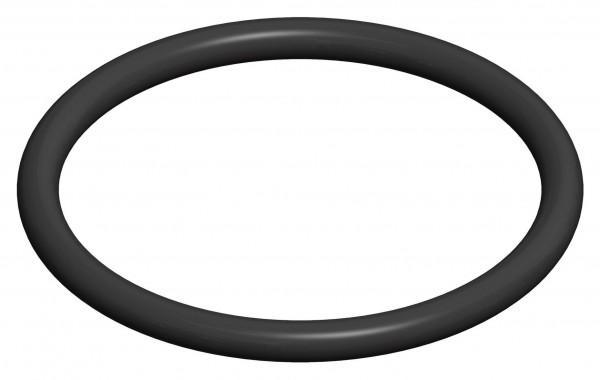 O-Ring Dichtung für Kontroll-Bauteile